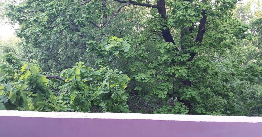 Аренда однокомнатной квартиры поселок Дубровский, метро Пражская, улица Турова 12А, цена 20000 рублей, 2021 год объявление №537436 на megabaz.ru
