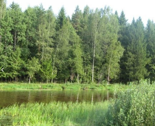 Продажа дома деревня Головково, цена 900000 рублей, 2021 год объявление №146395 на megabaz.ru