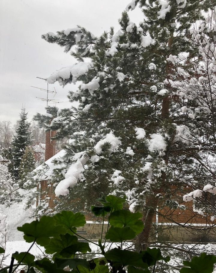 Продажа дома деревня Борки, Тенистая улица, цена 15000000 рублей, 2021 год объявление №285246 на megabaz.ru