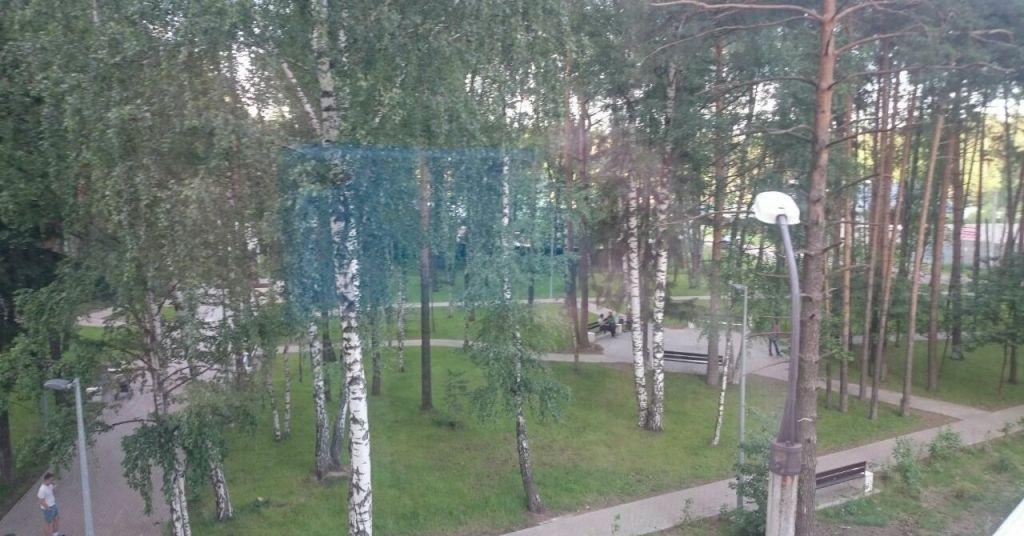 Аренда однокомнатной квартиры поселок Зеленый, Школьная улица 11, цена 17000 рублей, 2021 год объявление №916892 на megabaz.ru
