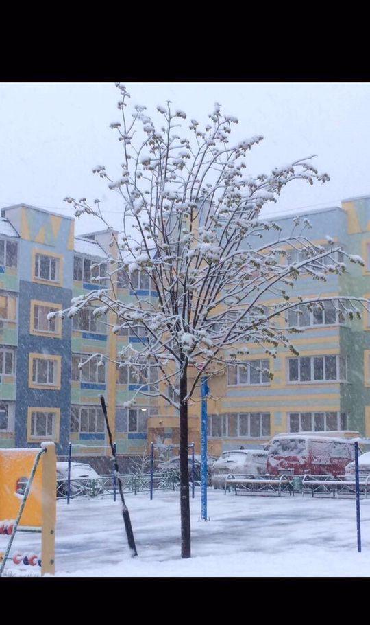 Аренда однокомнатной квартиры деревня Чёрная, Садовая улица 12, цена 23000 рублей, 2021 год объявление №920798 на megabaz.ru