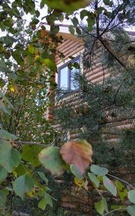 Продажа дома село Речицы, Центральная улица, цена 7500000 рублей, 2021 год объявление №302890 на megabaz.ru
