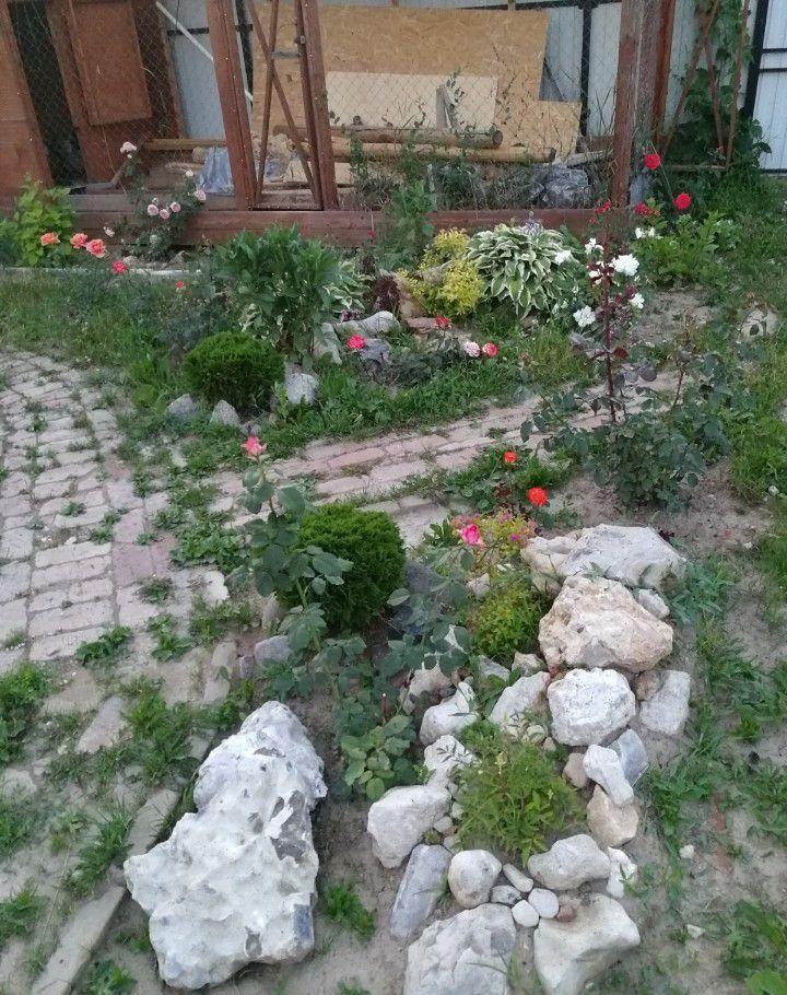 Продажа дома деревня Васькино, цена 5700000 рублей, 2021 год объявление №303536 на megabaz.ru
