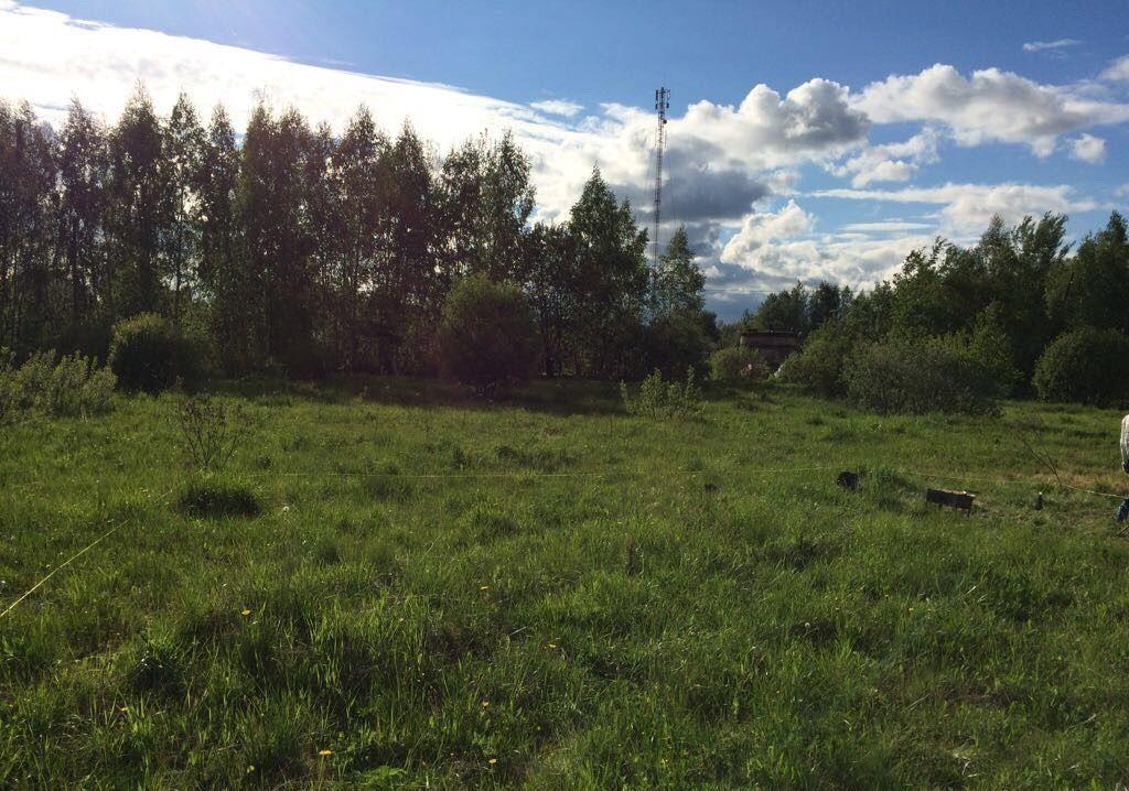 Продажа дома деревня Алфёрово, цена 1100000 рублей, 2021 год объявление №308474 на megabaz.ru
