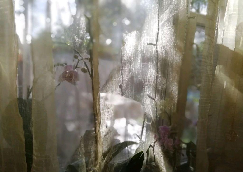 Продажа трёхкомнатной квартиры поселок городского типа Загорянский, Теннисная улица, цена 6500000 рублей, 2021 год объявление №314810 на megabaz.ru
