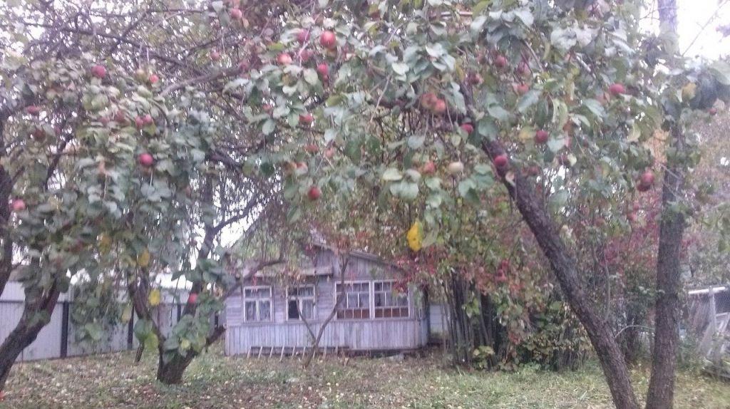 Продажа дома Кубинка, Можайское шоссе 15, цена 2000000 рублей, 2021 год объявление №333162 на megabaz.ru