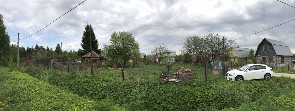 музее деревня страшево фото новгородская обл декорирование, вес начинка