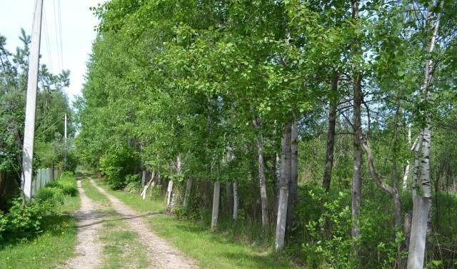Продажа дома деревня Бельское, цена 1690000 рублей, 2021 год объявление №40764 на megabaz.ru