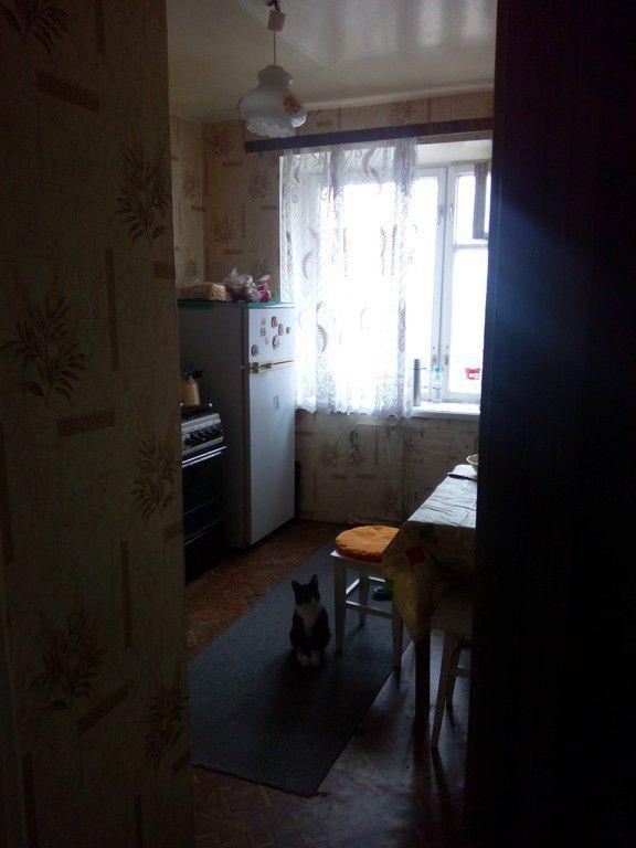 Аренда однокомнатной квартиры поселок городского типа Лесной Городок, Фасадная улица, цена 23000 рублей, 2020 год объявление №395739 на megabaz.ru